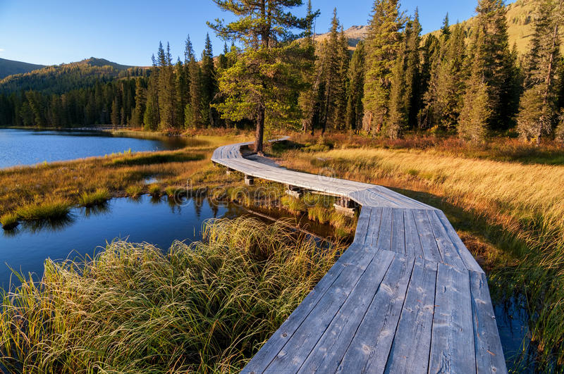 Download Wooden Boardwalk Along The Lake In The Mountains Stock Photo - Image of pedestrian, urban: 37559188