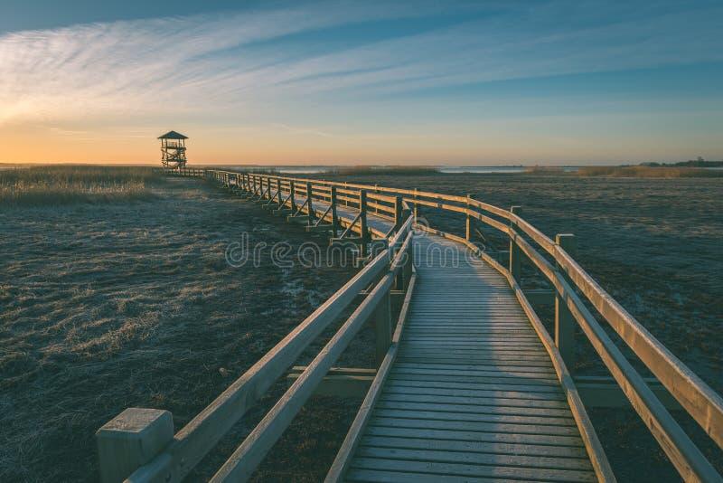 Wooden boardwalk with bird watch tower in early morning - vintage green look. Wooden boardwalk with bird watch tower in early morning with colorful sunrise in stock image