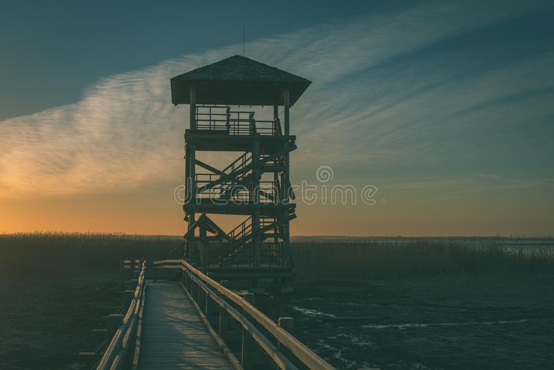 Wooden boardwalk with bird watch tower in early morning - vintage green look. Wooden boardwalk with bird watch tower in early morning with colorful sunrise in royalty free stock images