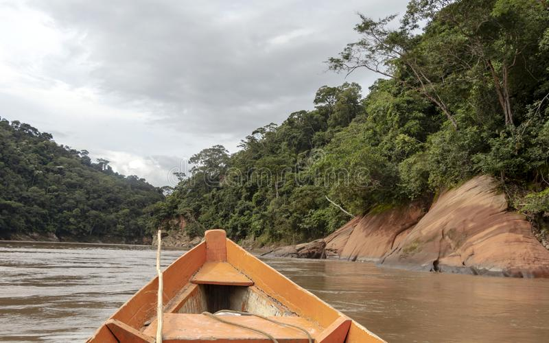 Wooden boat front and green jungle landscape, sailing in the muddy water of the Beni river, Amazonian rainforest, Bolivia. Contrast or orange wooden boat front stock photo