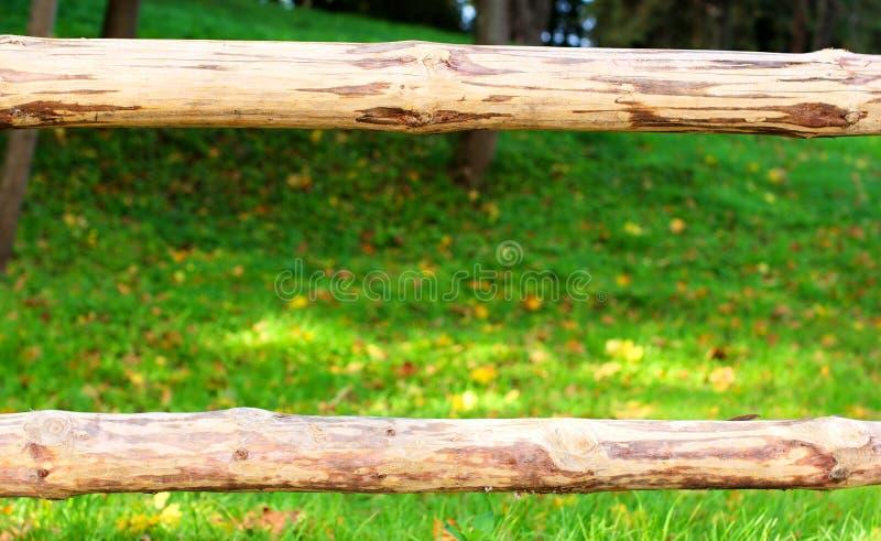 Wooden border grass