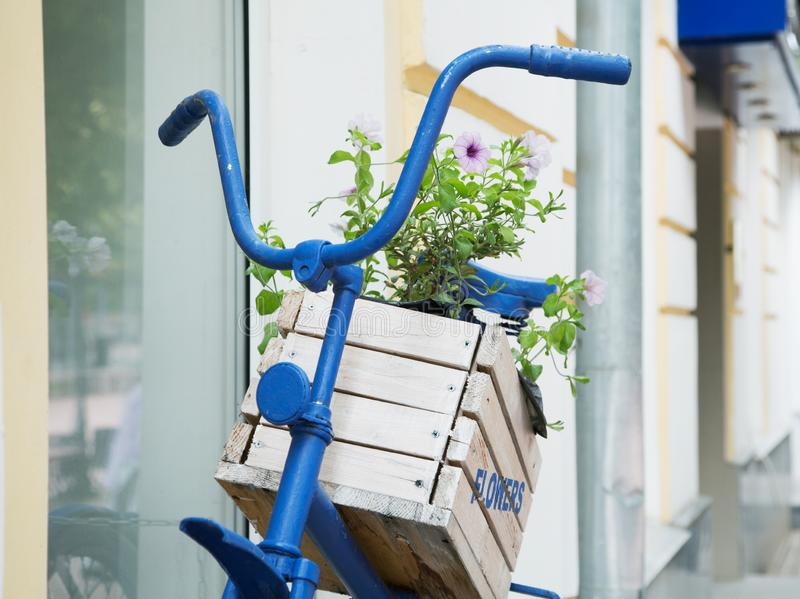 Wooden box with flowers on an old blue bike. City street royalty free stock image