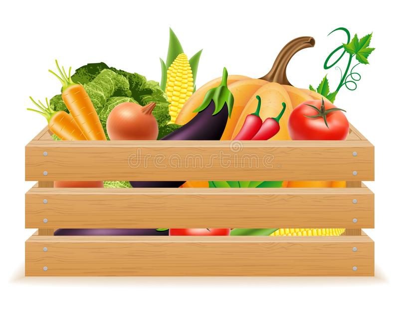 Wooden box with fresh and healthy vegetables vector illustration royalty free illustration
