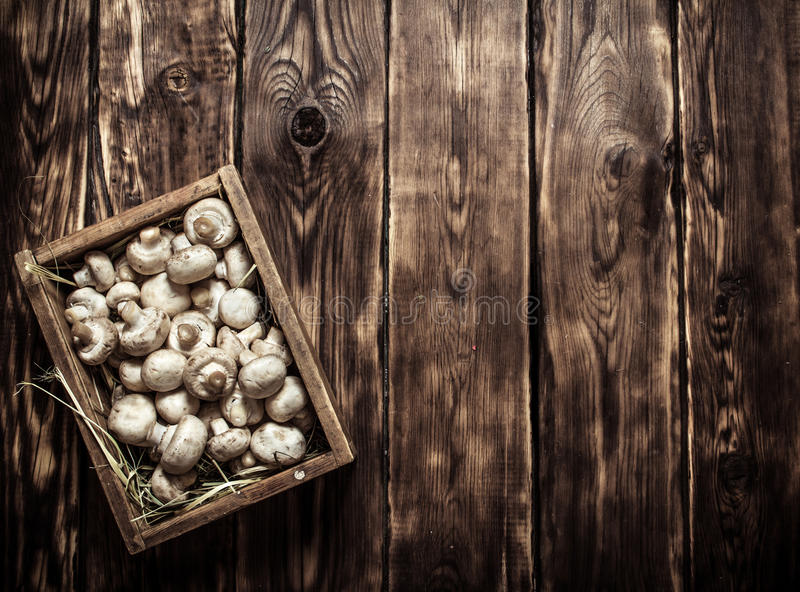 Wooden box of fresh mushrooms. On wooden background stock photos