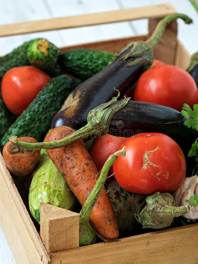 Wooden box with fresh vegetables from the vegetable garden. Harvesting. Seasonal vegetables. Located on a wooden white background stock image