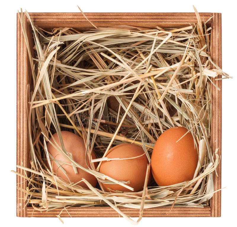 Wooden box with hay and eggs. On white background stock images