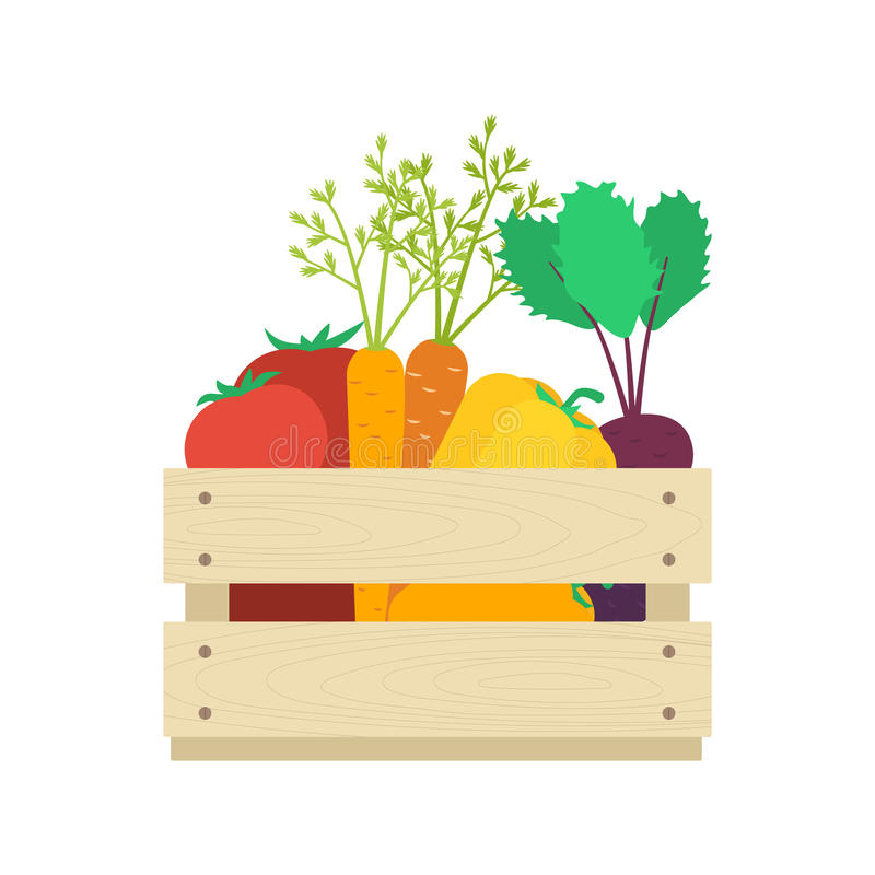 Wooden box with vegetables vector. Wooden box with vegetables: tomatoes, carrots, capsicums, beetroots. Harvest concept vector illustration royalty free illustration