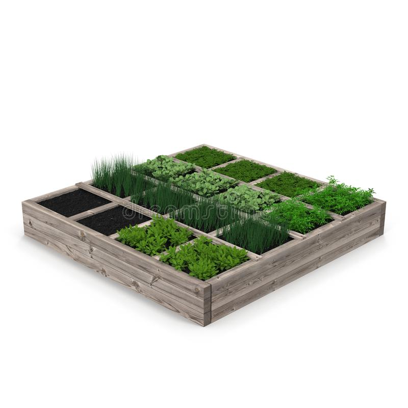 Wooden box with a young garden on white. 3D illustration vector illustration