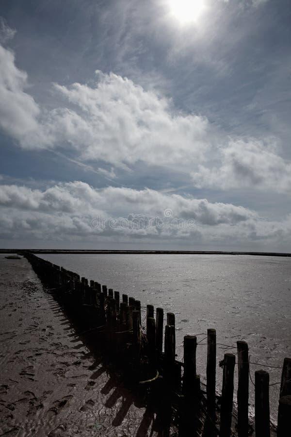 Wooden breakwater in the Wadden Sea