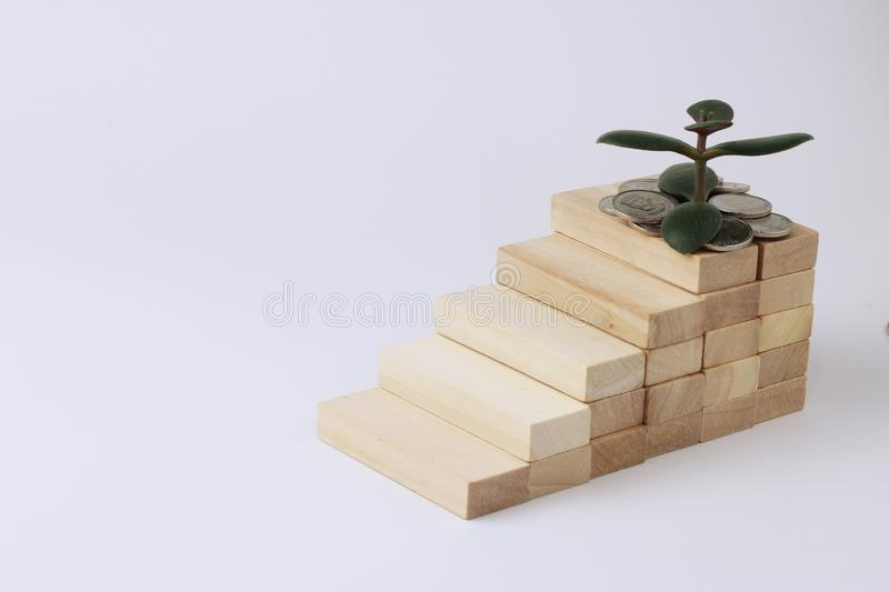 Wooden bricks built staircase. In fact, a money tree is growing, a symbol of wealth and coins. The concept of money growth, profit and capital accumulation stock photo