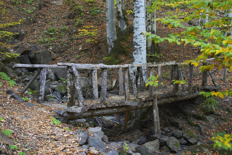 Download Wooden Bridge stock photo. Image of rivulet, rock, stone - 38722
