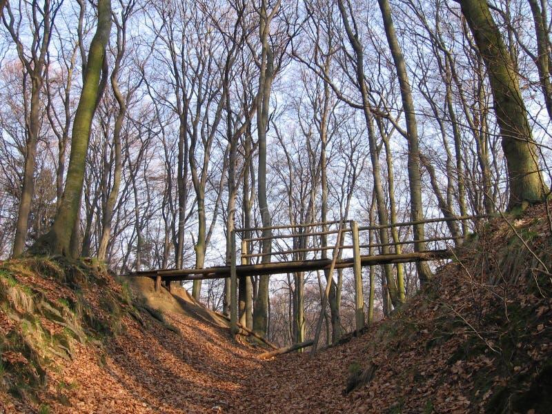Wooden bridge. In the park - autumnal view stock photos