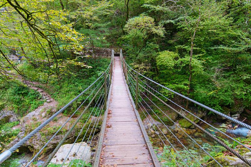 Wooden bridge above the clear turquoise water of the Zadlascica river surrounded by green trees. Tolmin Gorge Tolminska Korita. stock photo