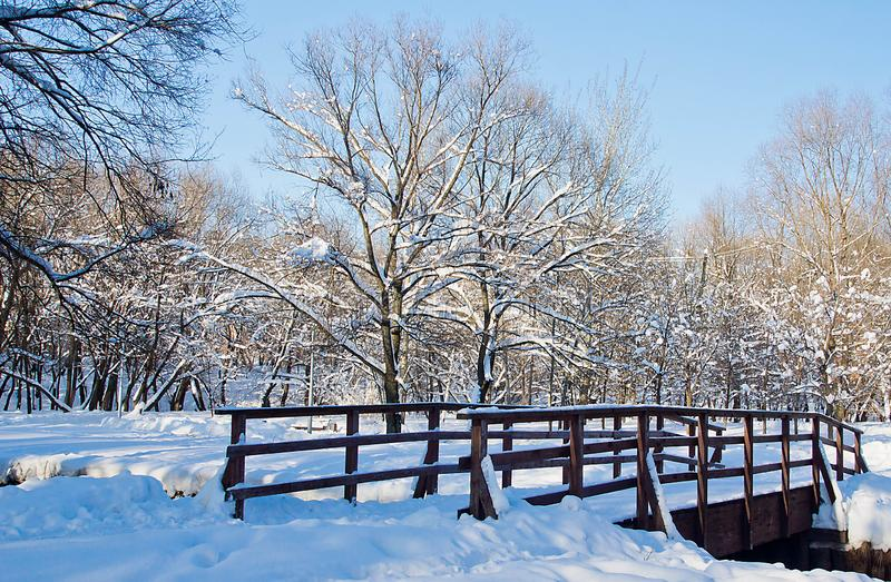 Wooden bridge in a city park on a winter day royalty free stock images
