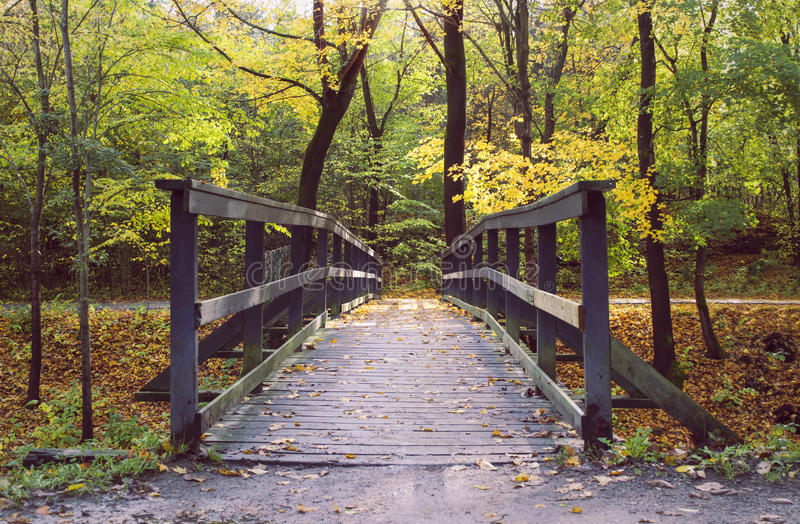 Wooden bridge in colourful autumn forest. Deep perspective of wooden pedestrian bridge in autumn forest full of colours. Sun seeping trough the leaves stock image