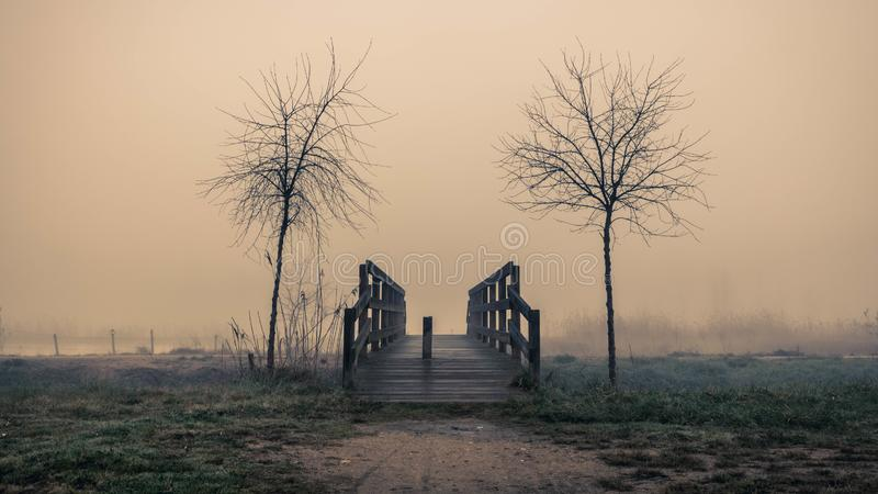 The bridge to somewhere. Wooden bridge flanked by trees in a foggy landscape in Sils wetland in Girona royalty free stock image