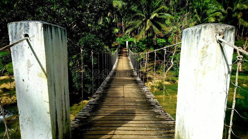 Wooden bridge in the jungle on Philippines stock image