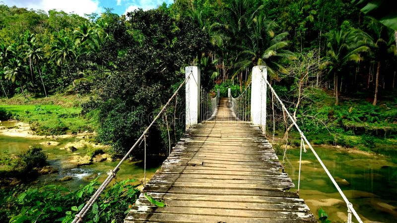 Wooden bridge in the jungle on Philippines stock photo