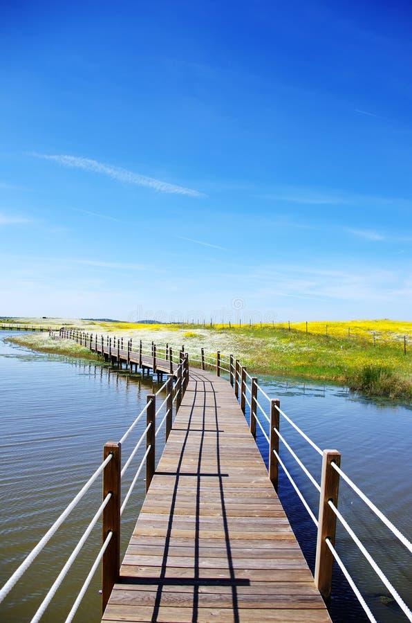 Wooden bridge into the lake of Alqueva. In Alentejo, Portugal stock photos