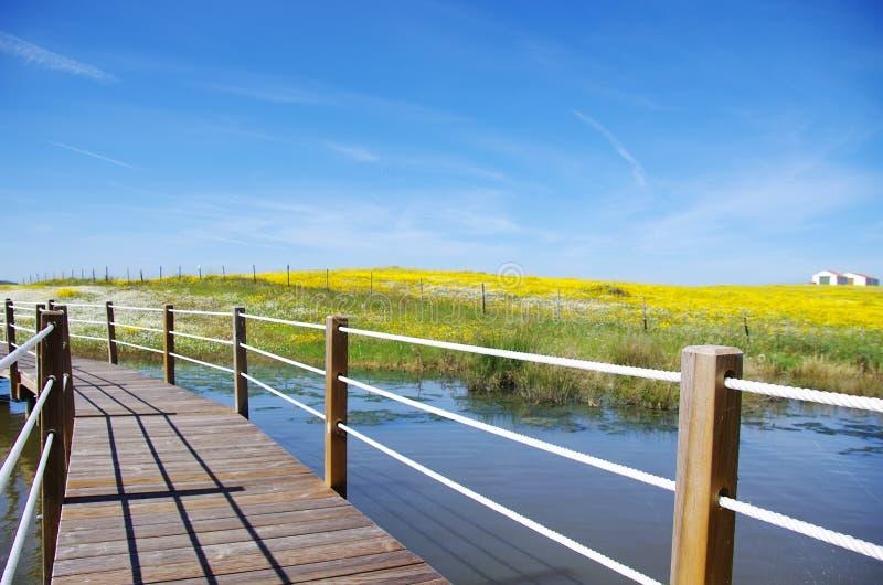 Wooden bridge into the lake of Alqueva. In Alentejo, Portugal royalty free stock photography