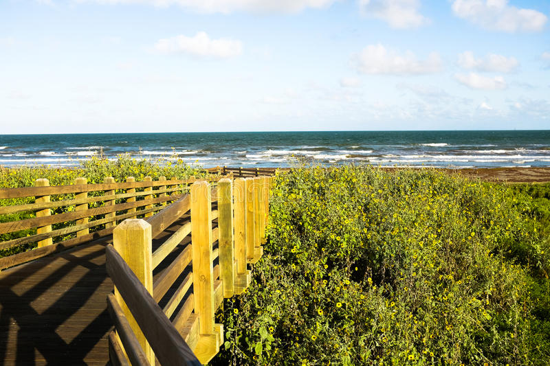 Wooden bridge leading to the ocean. Wooden bridge surrounded by greenery leading to the ocean royalty free stock images