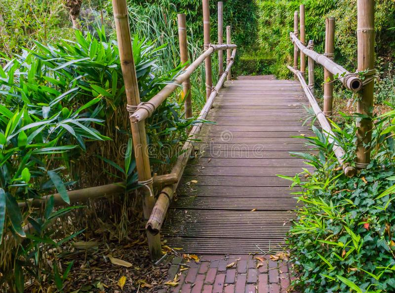 Wooden bridge made out of bamboo wood asian architecture in a green garden royalty free stock photography