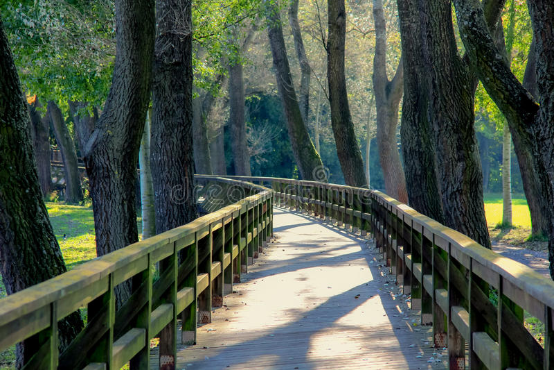Wooden bridge lanscape royalty free stock image