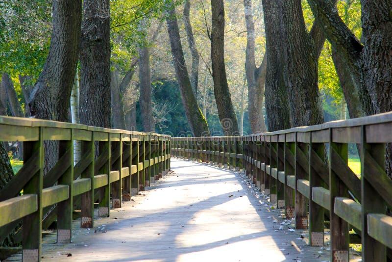 Wooden bridge landscape stock images