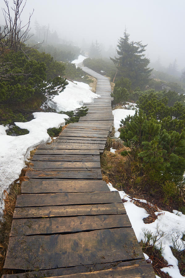 Wooden bridge on a mountain trail in the fog royalty free stock images