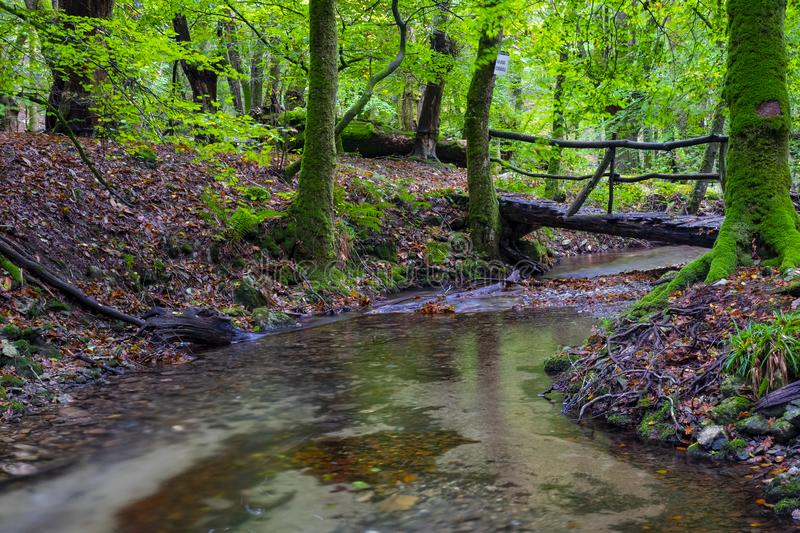 Wooden bridge over the Bianditzko river in the forest of Artikutza royalty free stock images