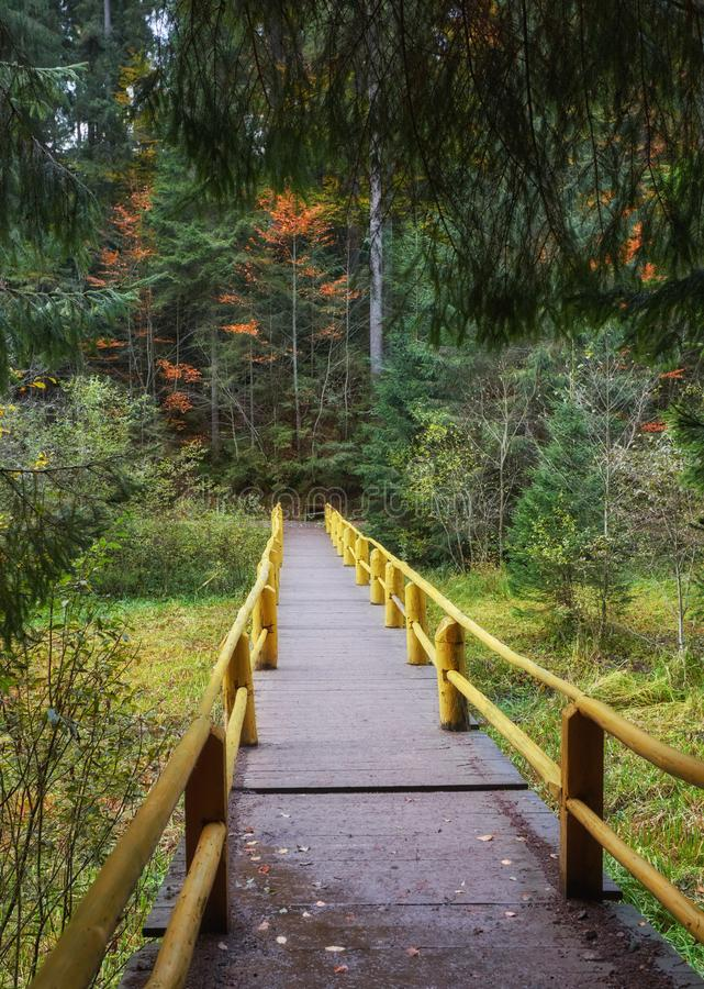 Wooden bridge over brook in autumn royalty free stock image