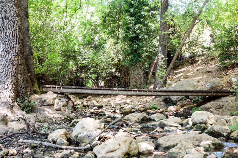 Wooden bridge over the forest stream Amud in the north of Israel stock photos