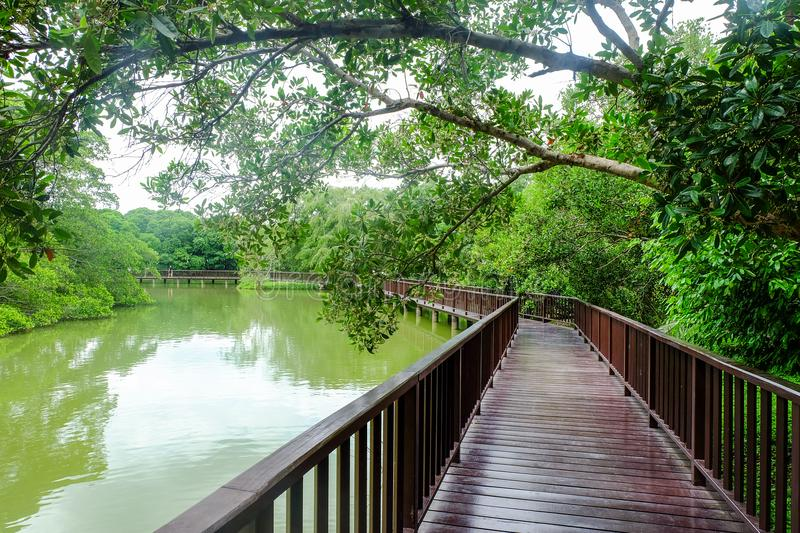 Wooden bridge over lake in evening. Holiday concept stock photography