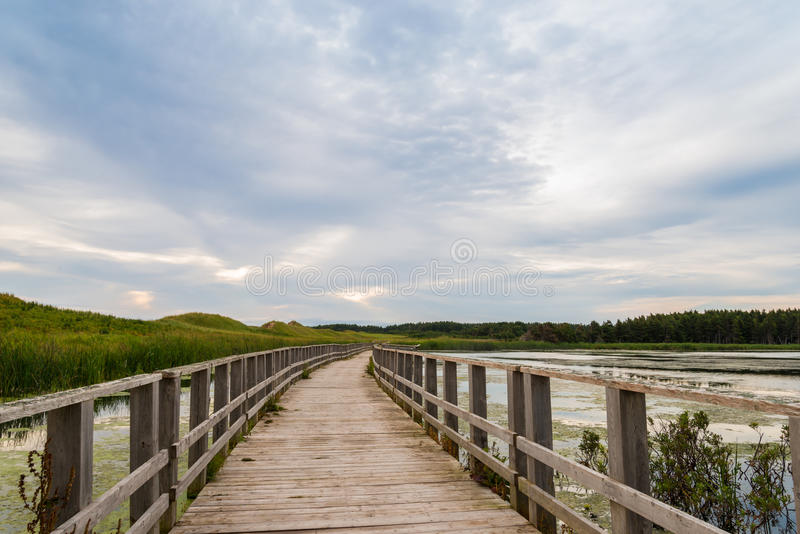 A wooden bridge over a marsh in the Cavendish Dunelands stock images