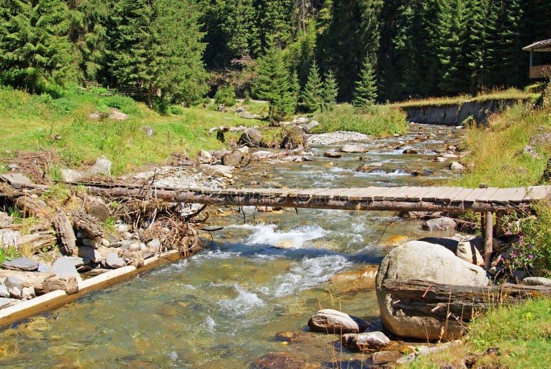 Wooden bridge over mountain spring royalty free stock image