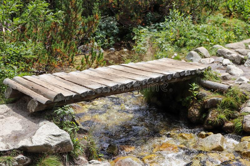Wooden bridge over mountain stream. Pine forest in the background. Stone hiking trail stock photography