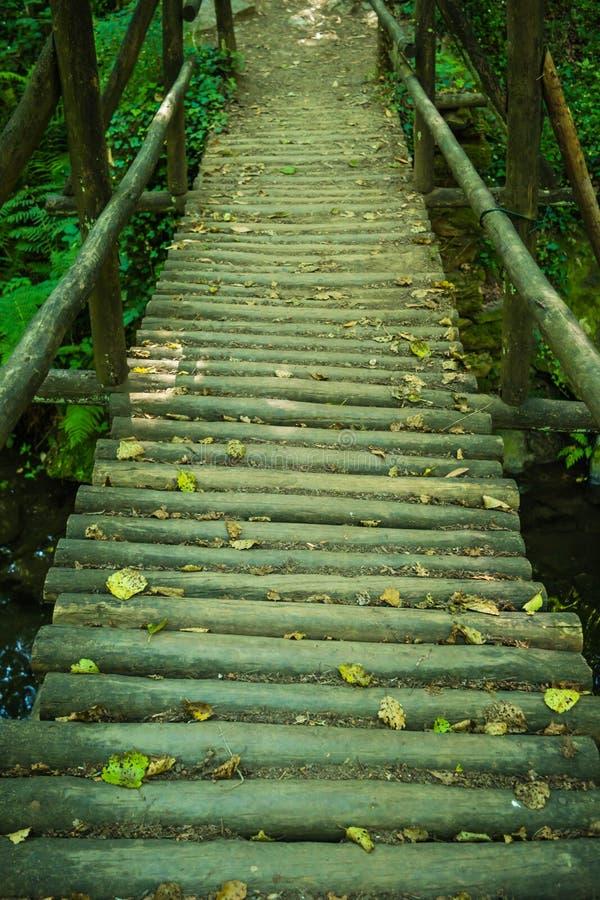 Wooden bridge over the Rio Mau in Cabreia`s Park, Sever do Vouga. Aveiro, Portugal royalty free stock photography