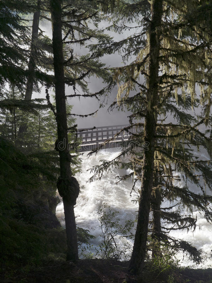 Wooden bridge over roaring mountain river royalty free stock images