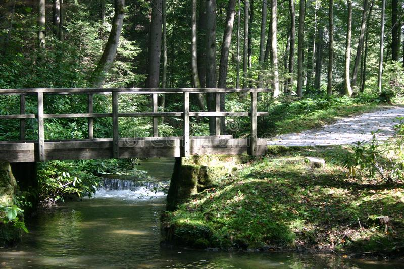 Download Wooden bridge in a park stock photo. Image of trees, clear - 6416494