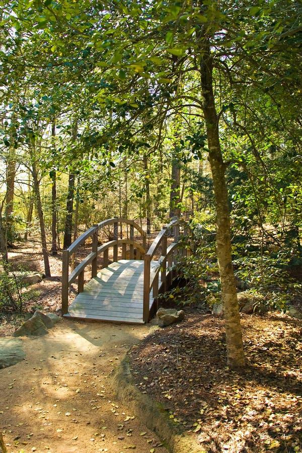 Wooden bridge pathway woods royalty free stock photos