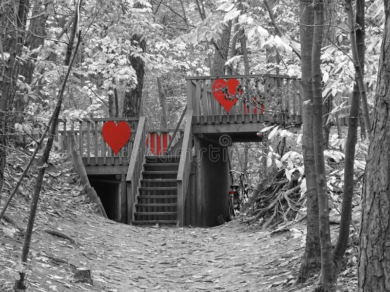 Wooden bridge with red hearts in forest. Grey scale playground kids with bike stock photo