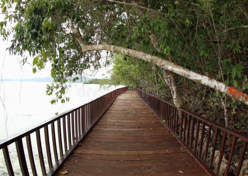 Wooden Bridge on the Sea stock photos