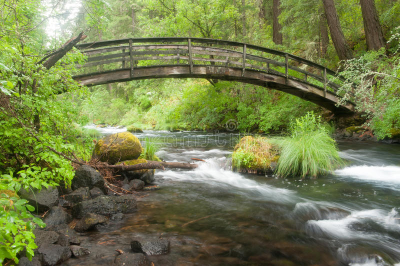 Wooden bridge spans a river in the woods