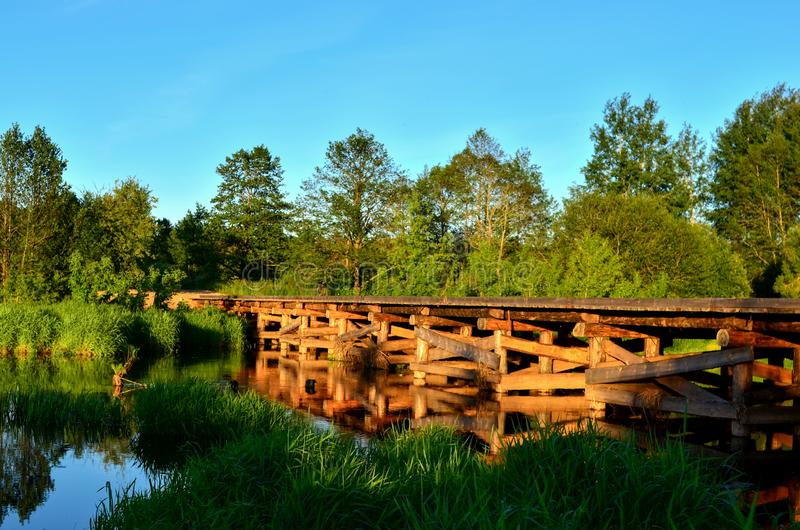 A wooden bridge of tree logs lies across a small river inside a wooded area among green nature. royalty free stock images