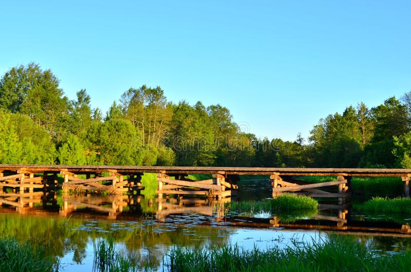 A wooden bridge of tree logs lies across a small river inside a wooded area among green nature stock photos