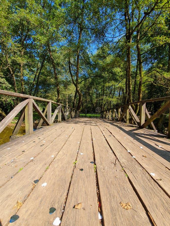 Wooden bridge. In beautiful park on the outskirts of sarajevo in bosnia stock photos