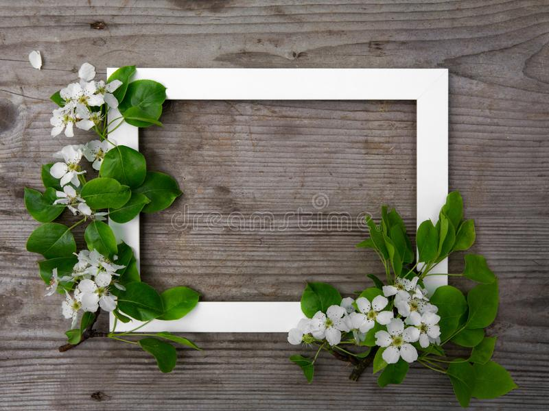 Wooden brown background. White frame with flowers apple. Festive frame. Copy space, flat lay. Summer mood stock photo