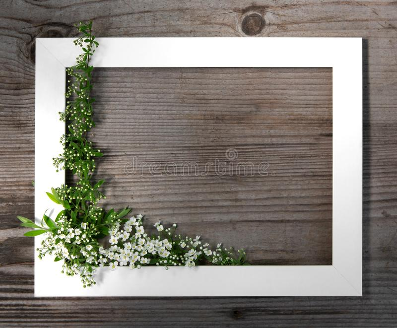 Wooden brown background. White frame with flowers spirea. Festive frame. Copy space, flat lay. Summer mood stock image