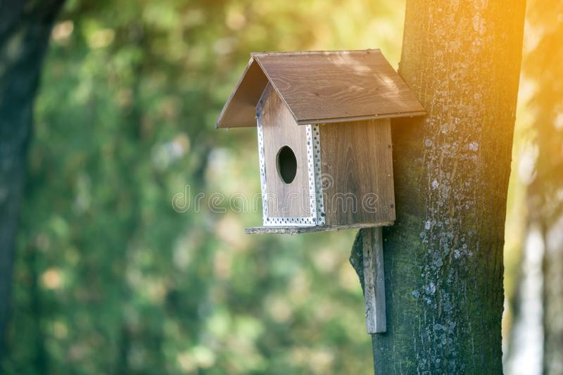 Wooden brown new bird house or nesting box attached to tree trunk in summer park or forest on blurred sunny green foliage bokeh. Background. Wildlife protection royalty free stock photos