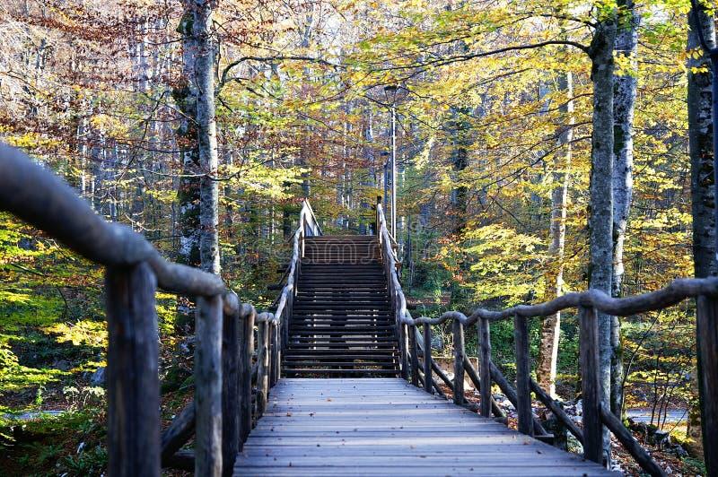 Wooden brug door de rivier Najaarsseizoen royalty-vrije stock afbeeldingen